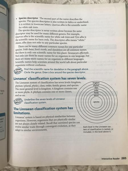 IR pages 285.jpg