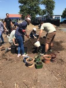 group of students digging a hole with plants and plant containers on the dirt near them