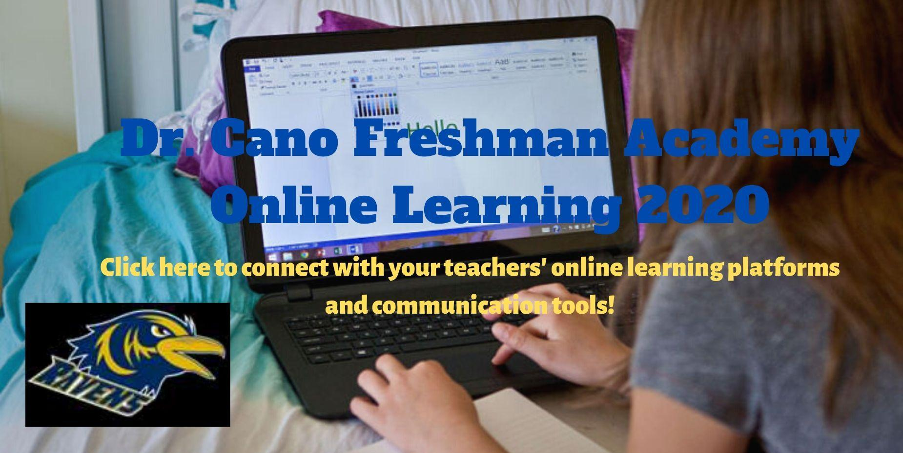 Cano Online Learning 2020