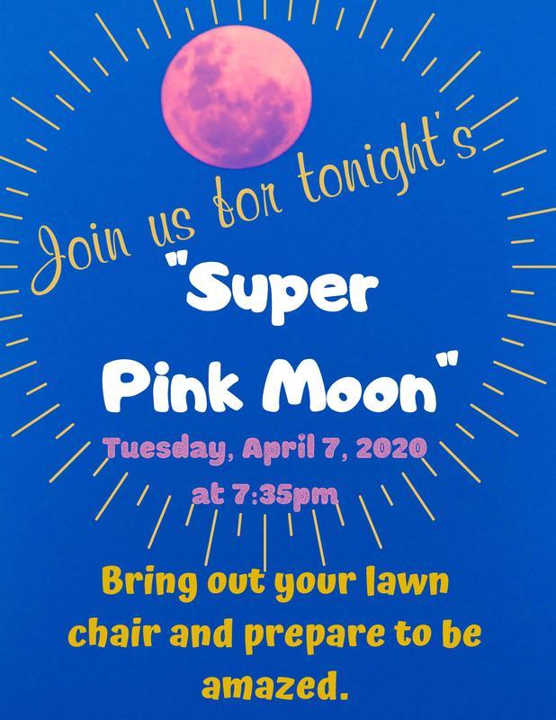Pink Moon Flyer