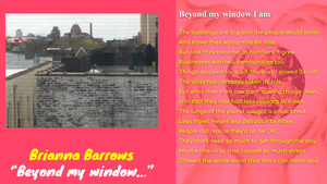 Copy of Beyond My Window Voting Guide.png