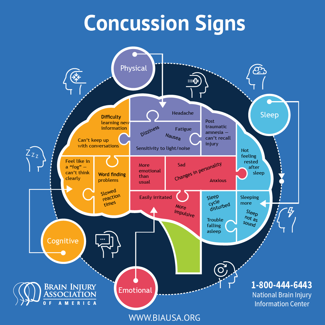 Concussions Infographic