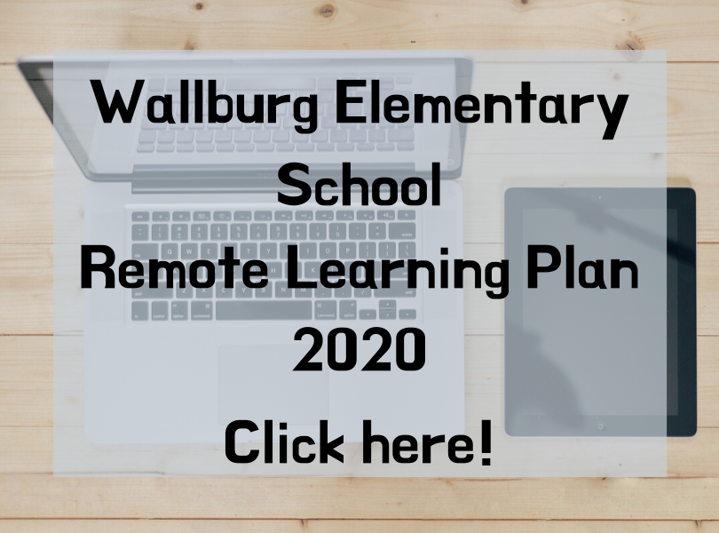Remote Learning Plan 2020