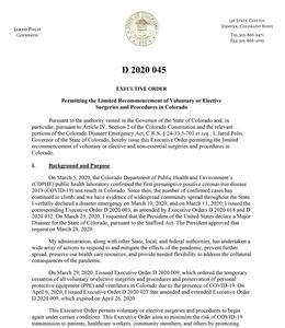 D 2020 045 Elective Surgeries-1.jpg