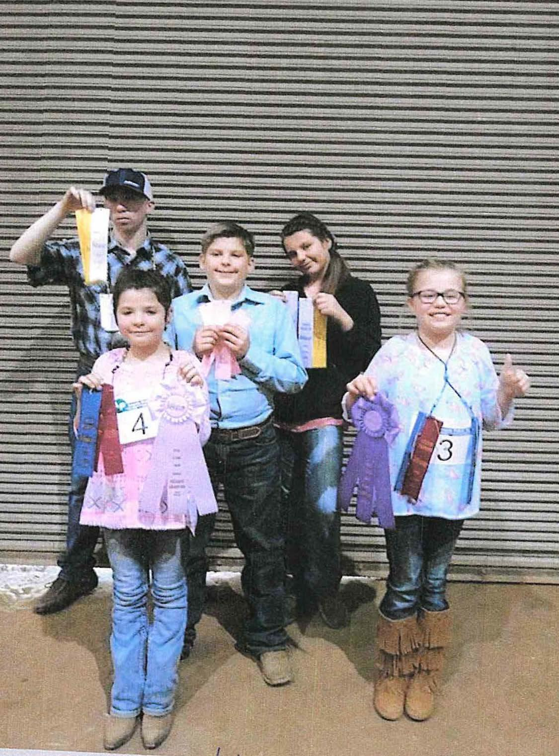 Llama Contest Winners