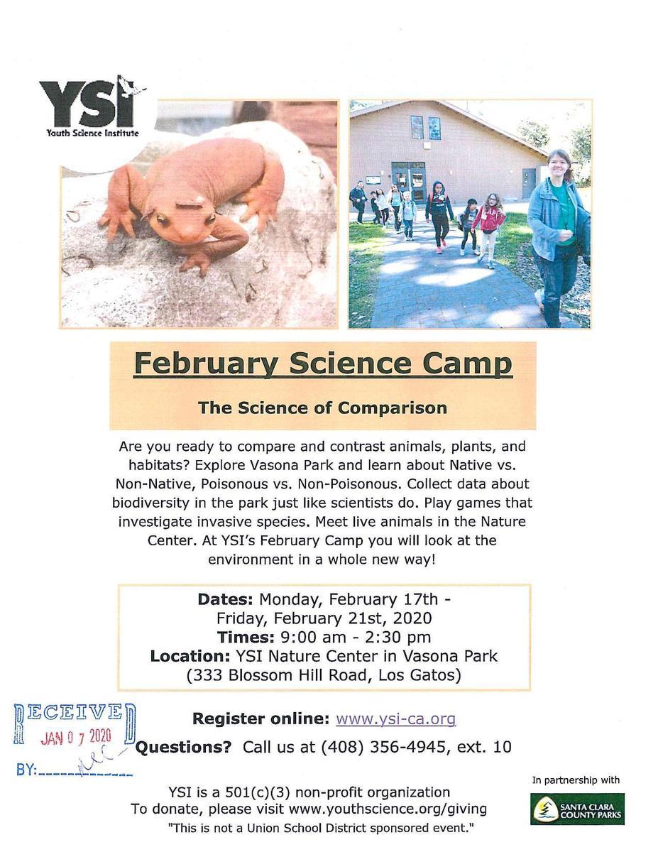 YSI February Camp