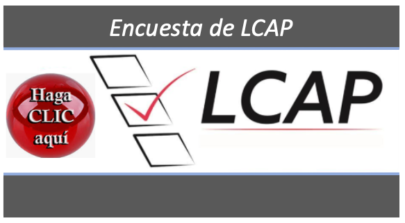 LCAP Survey Spanish
