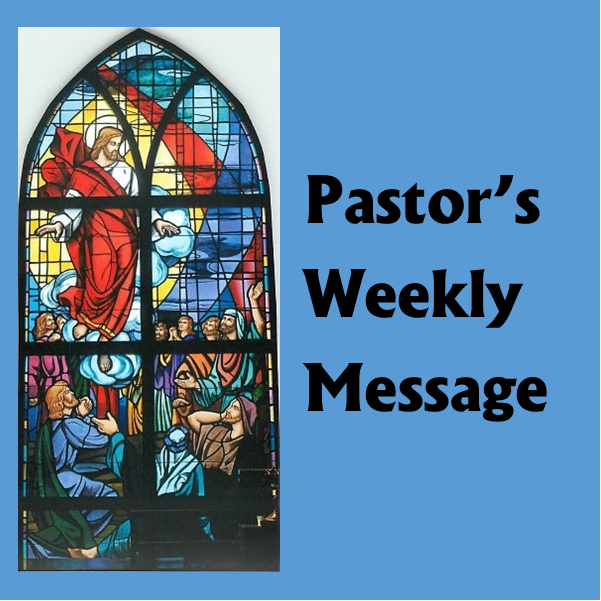 Weekly Letter from Father John Featured Photo