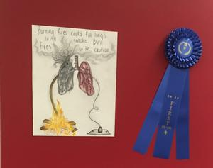 Picture of Overall Winner's Art Submission