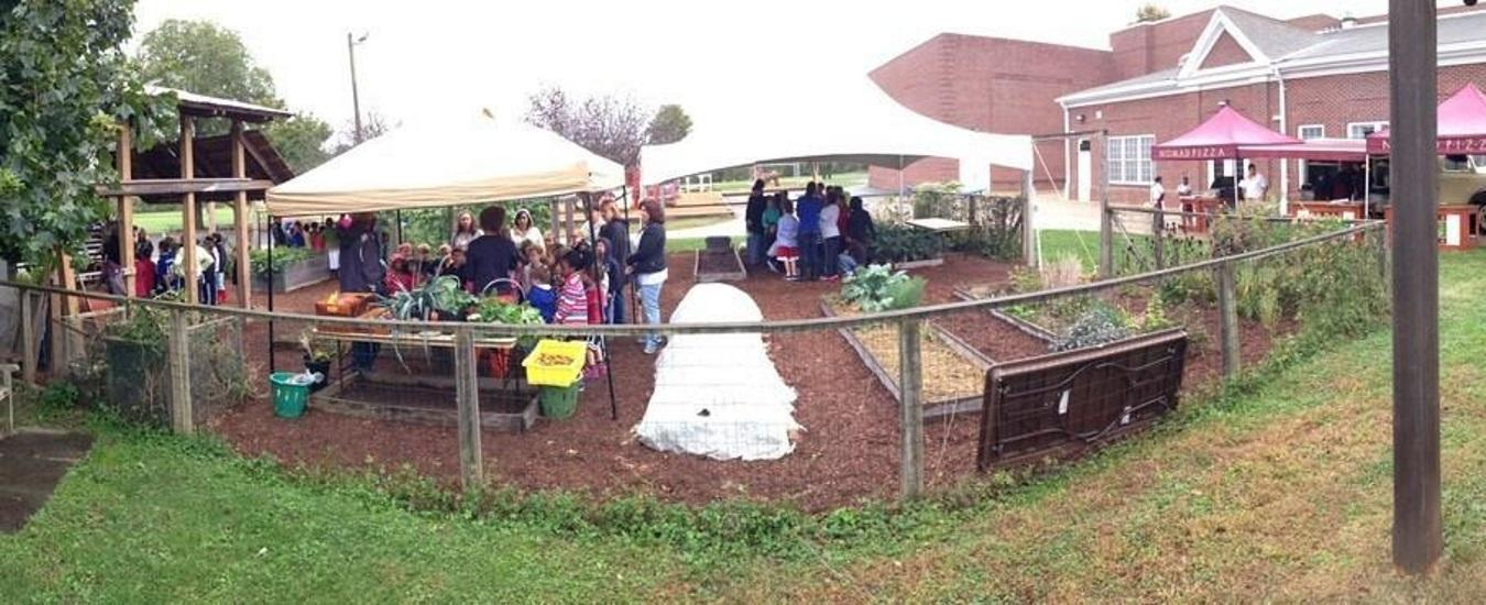 Classes participate in Farm Day in the Hopewell Elementary garden