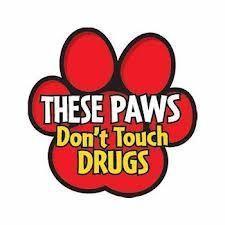 RRW paws