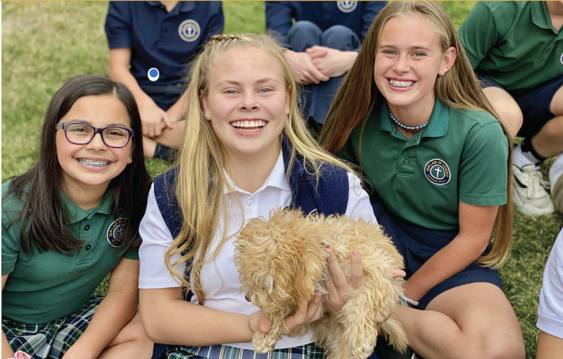 Earn Judge Credits at New 7th/8th Academy Featured Photo