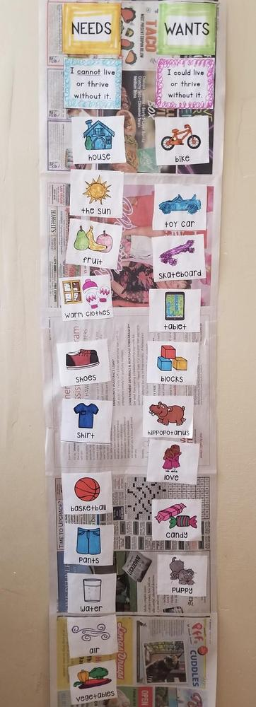 Student collage of needs and wants