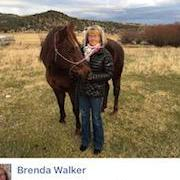 Brenda Walker's Profile Photo