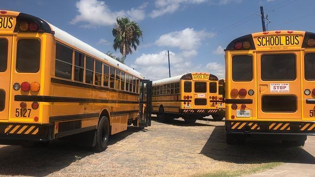 three school buses in a bus yard
