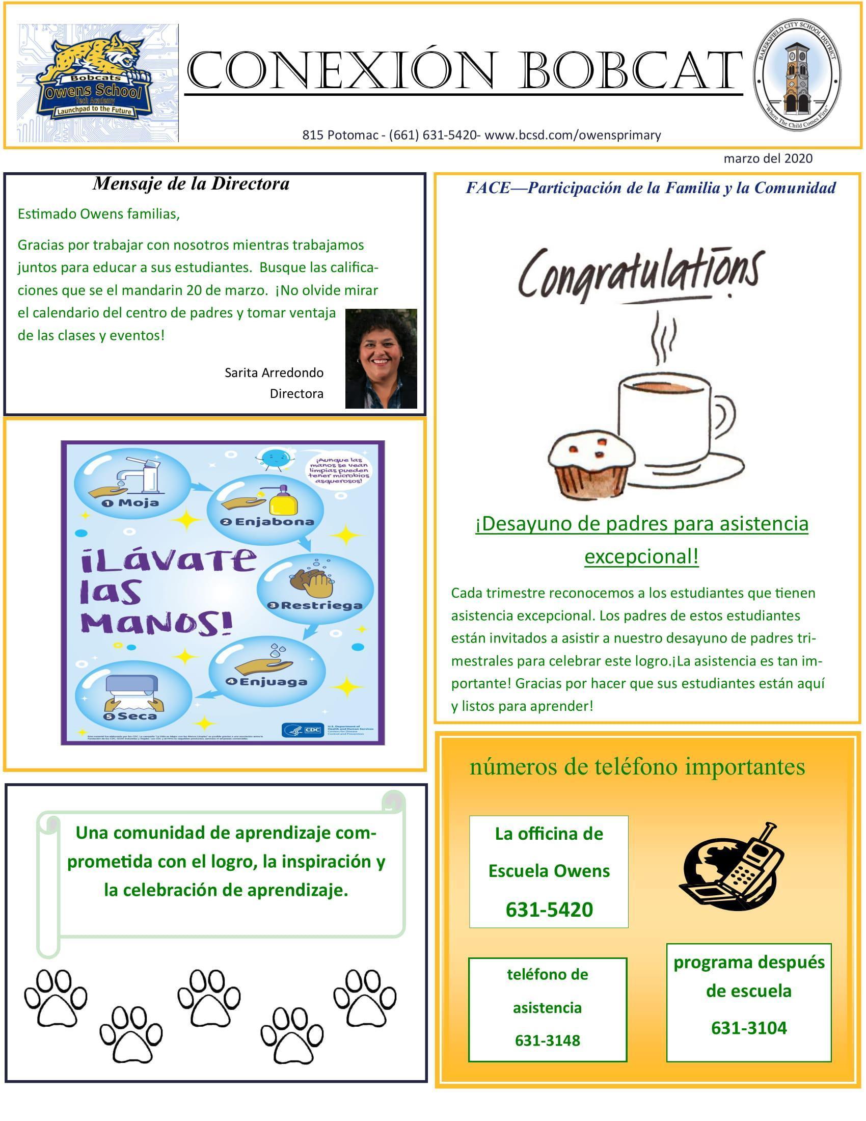 Newsletter Spanish