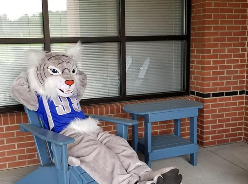Wildcat Mascot relaxing