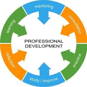 professional-development-essential-skills.jpg