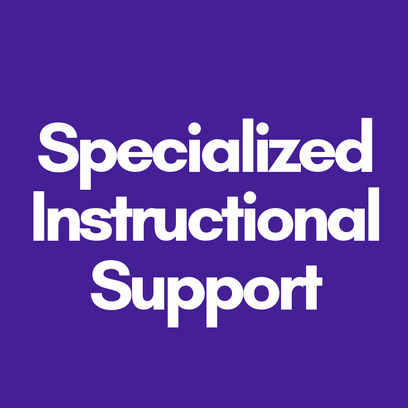 Specialized instructional support