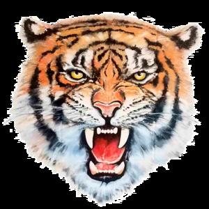 LMS Logo 6.png
