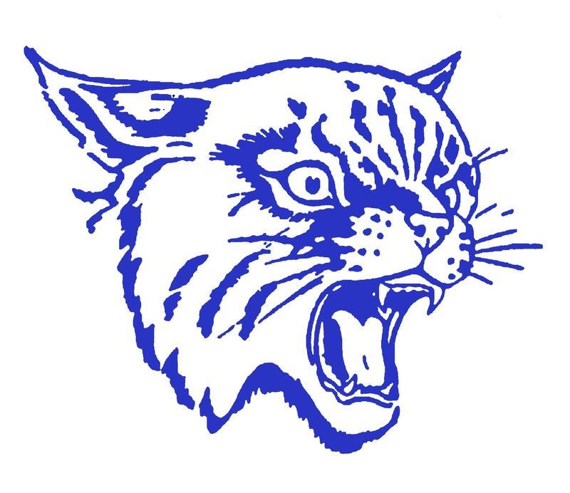 Wildcat TISD