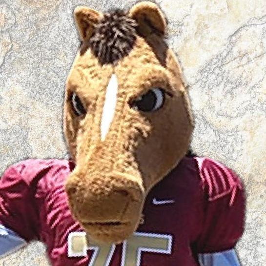 Brookwood's Buster the Mascot's Profile Photo