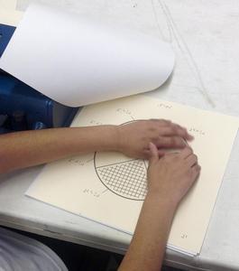 Closeup of a student examining a circle graph