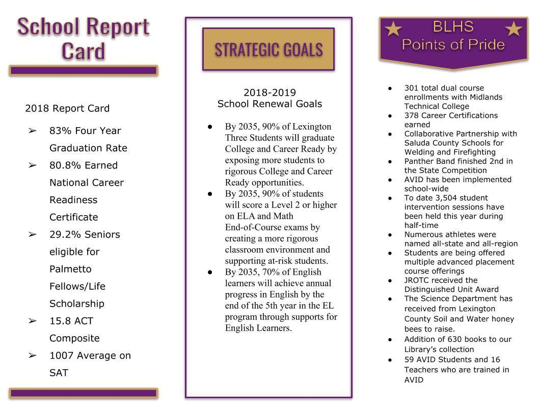 18-19 SIC Report P2