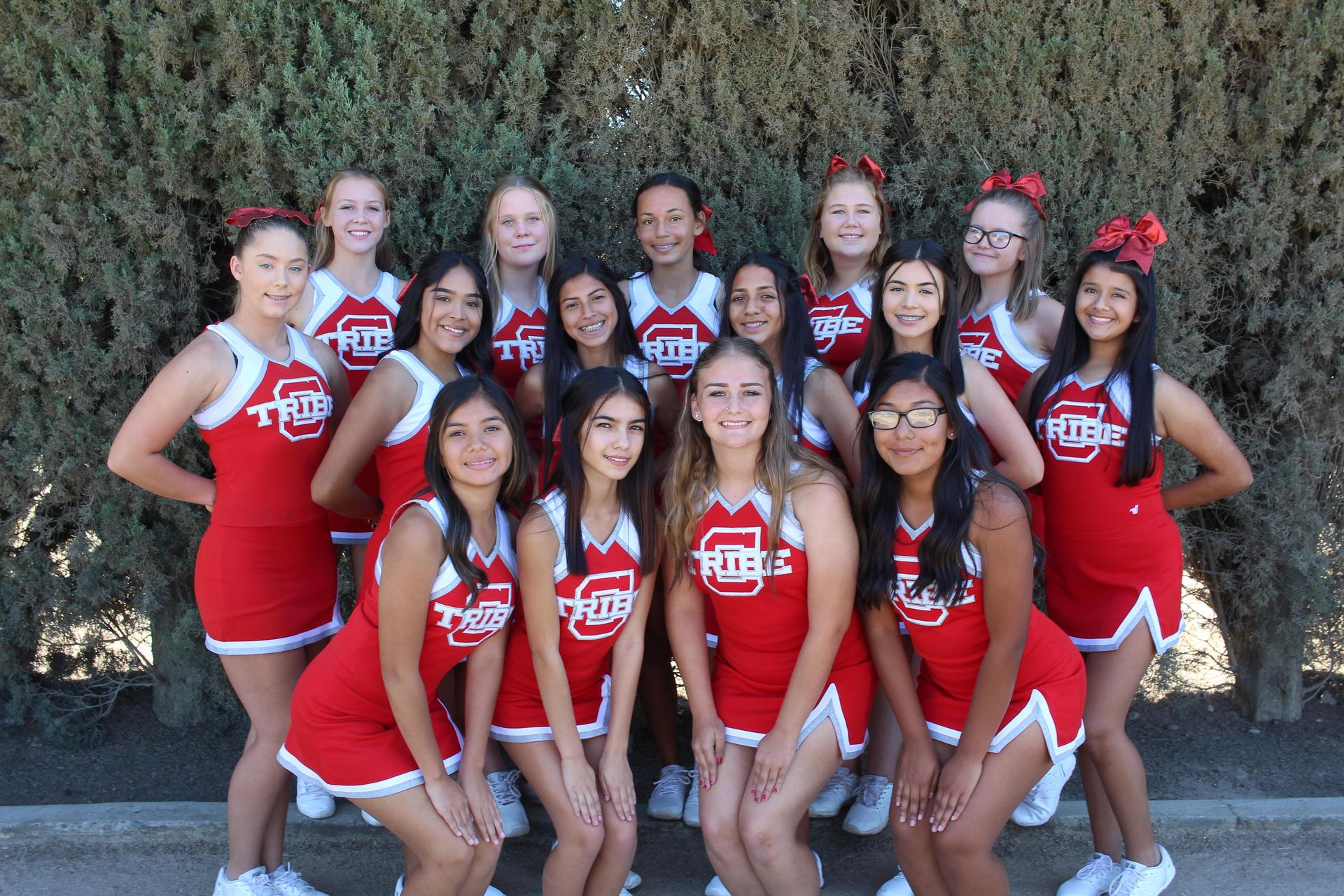 Junior Varsity Cheer posing