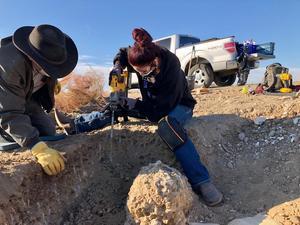 Dallis Digging