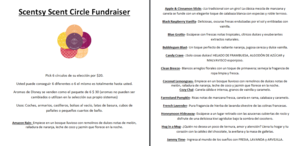 PTO Scentsy Fundraiser Spanish.PNG