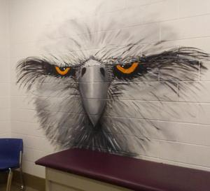 EAGLE MURAL Boys Dressing Room.jpg