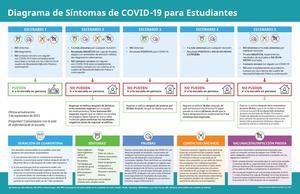 COVID Symptoms Flowchart