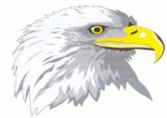 Echo Shaw Eagle Logo