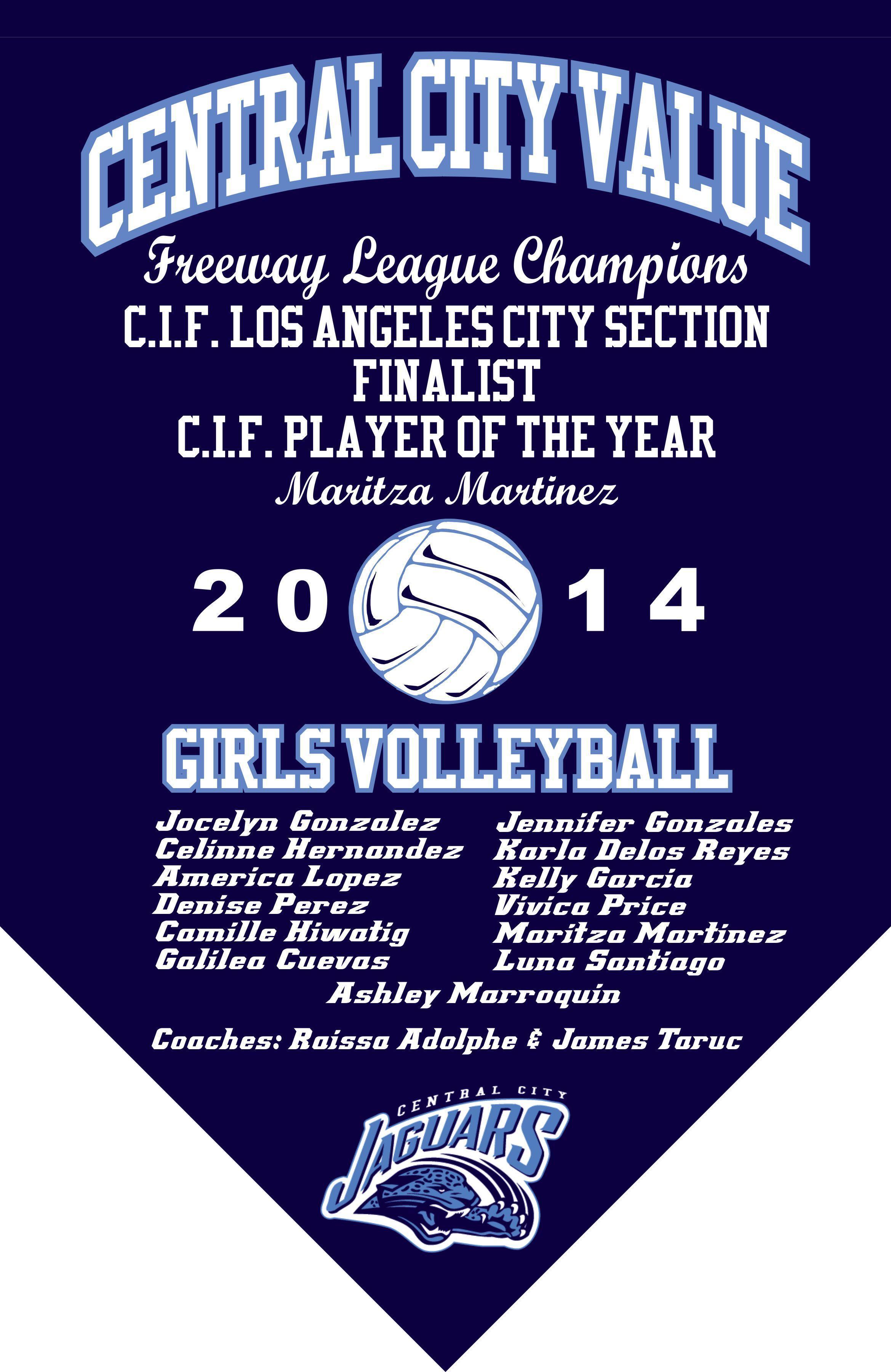 2014 Girls Volleyball Finalists Banner