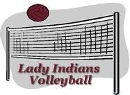 V-ball logo