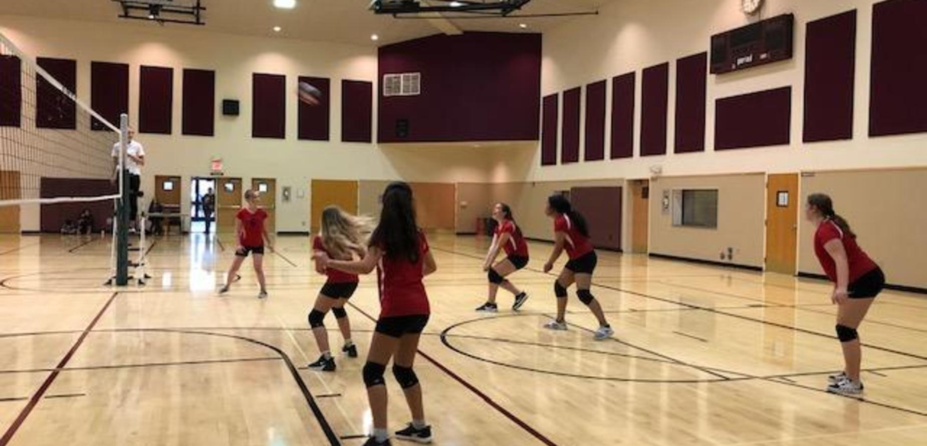 Girls volleyball team, 2019