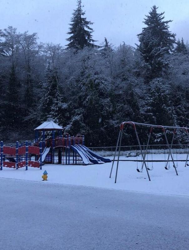 Snow Picture of School