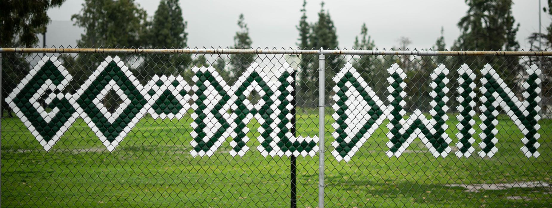 Go Baldwin Fence Art Work