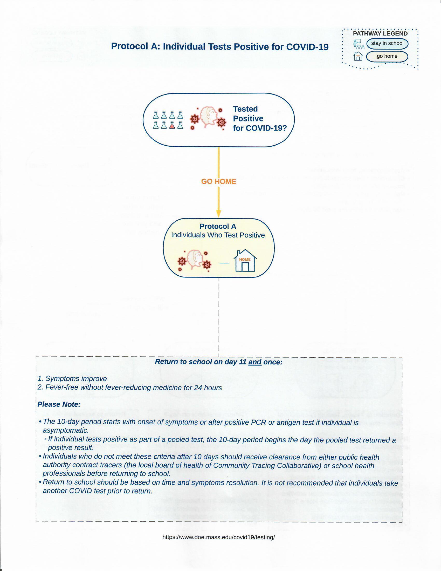 Covid 19 Testing Flow Chart 2/3