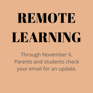 REMOTE LEARNING (2).png