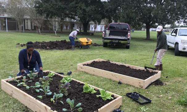 Garden compliments of the Youth Development Southern University Land Grant Campus Sustainable Agriculture and Rural Development Institute (SARDI). Thanks to Tony Harris and Kayla Fontenot.