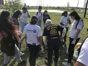 MNTHS Interact Club planting tree