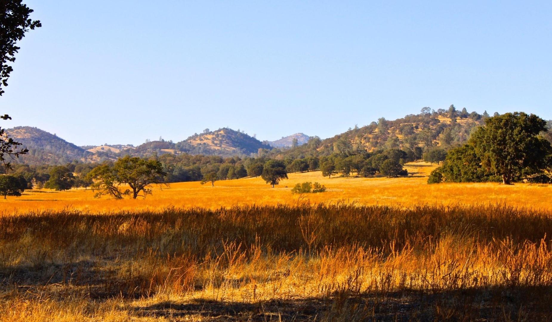 Copperopolis Scenery