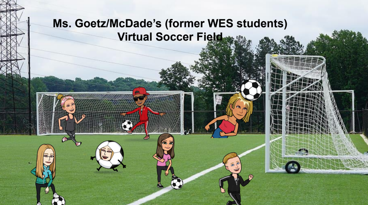 Picture of Mrs. Goetz's Virtual Soccer Field