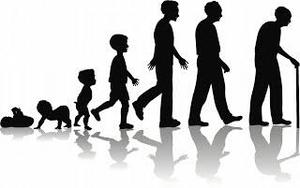 Human Growth & Development clip art