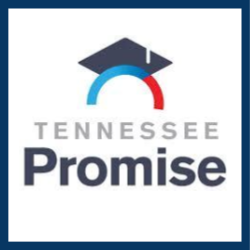 tn promise icon