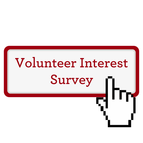 Button - Volunteer Survey
