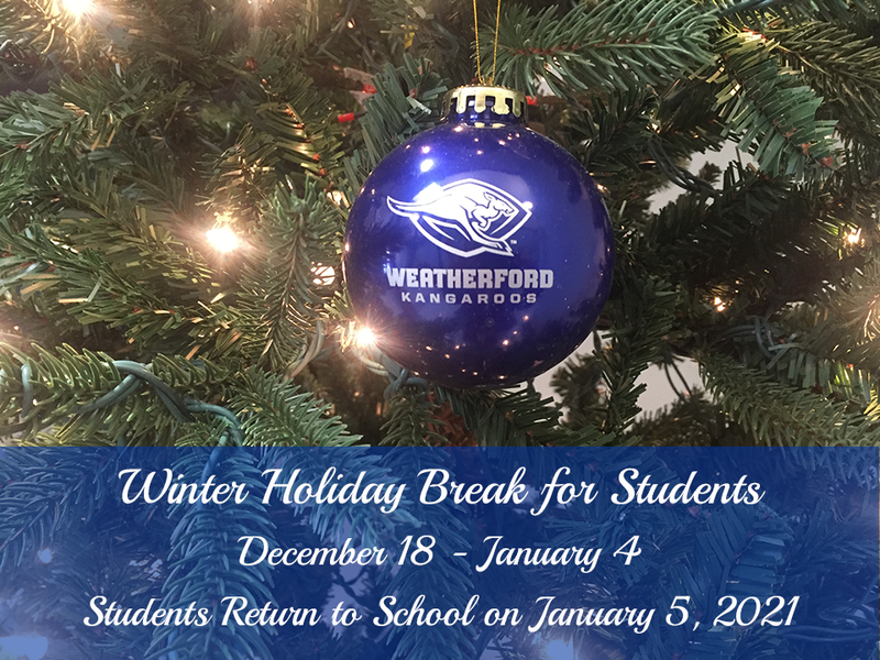 Christmas tree with Kangaroo ornament | Dates for Winter Break