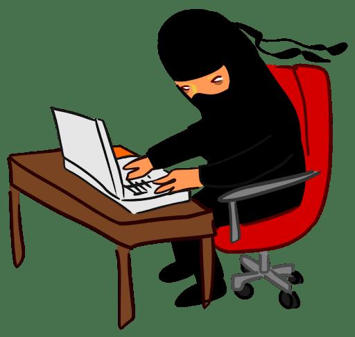 Ninja on computer